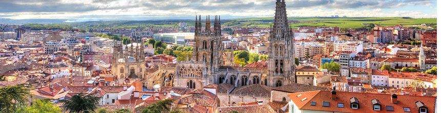 Cestas de Navidad a domicilio en Burgos