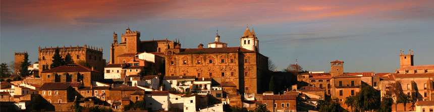 Cestas de Navidad a domicilio en Cáceres