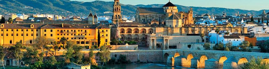 Cestas de Navidad a domicilio en Córdoba
