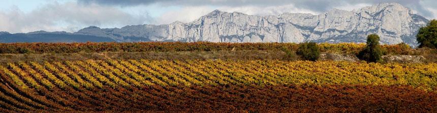 Cestas de Navidad a domicilio en La Rioja