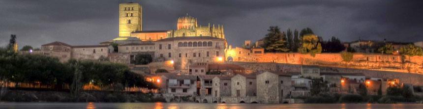 Cestas de Navidad a domicilio en Zamora